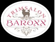 Baroxx Logo