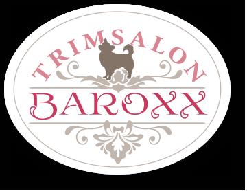 Baroxx Sticky Logo Retina