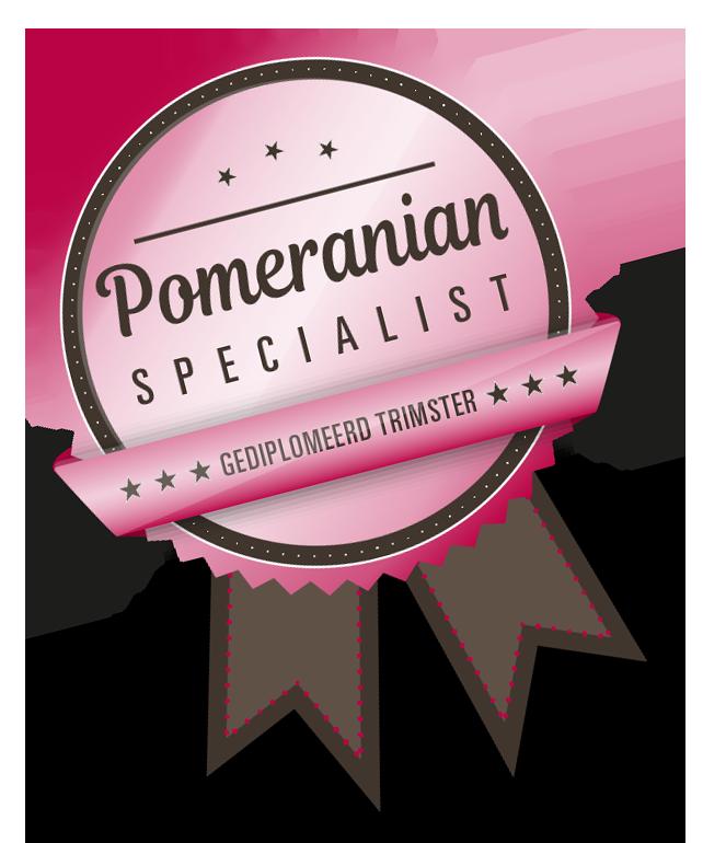 Pomeranian specialist